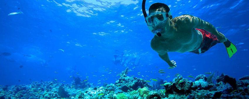 Faire du snorkeling à Santorin