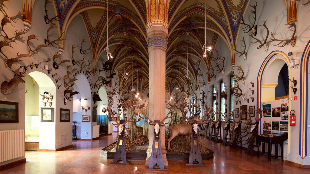 La salle de la chasse du musée de l'agriculture de Budapest