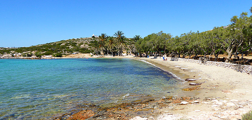 La plage d'Agia Irini à Paros